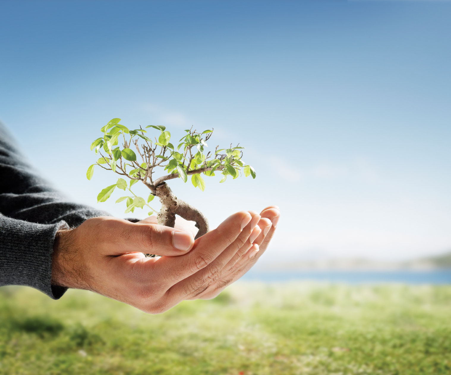 assignment on natural environment Assignment on business environment the natural environment includes geographical and ecological hnd assignment help is the #1 assignment.