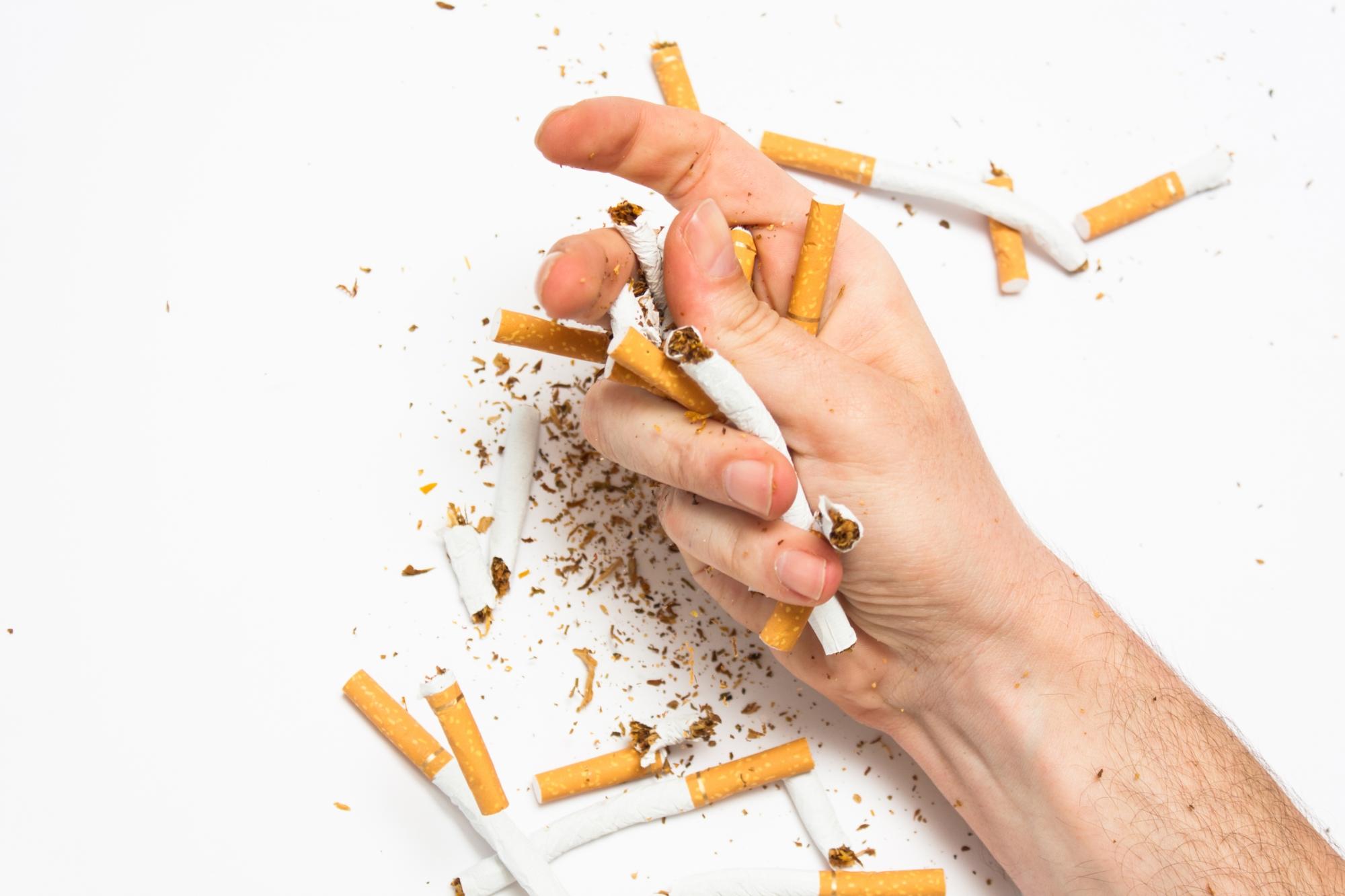Как сделать сигарету в домашних условиях своими руками из чая, бумаги 54