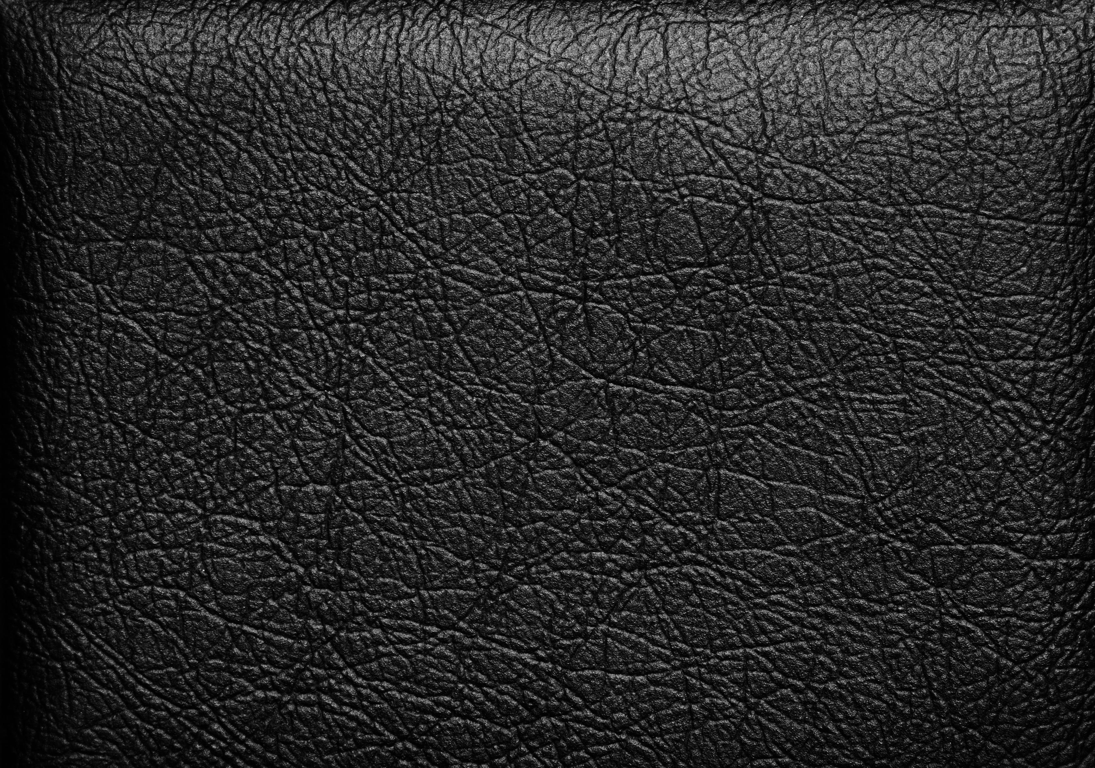 Черная кожа Black Leather