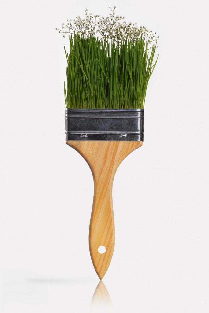 4196iStock green eco paintbrush Med 685x1024 Щетка   Brush