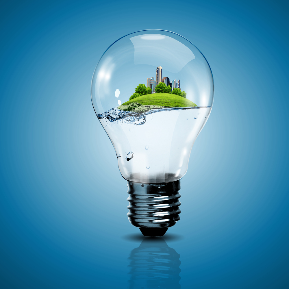 Electric light bulb and a plant inside it as symbol of green energy shutterstock 110973035 Лампочка   Lightbulb