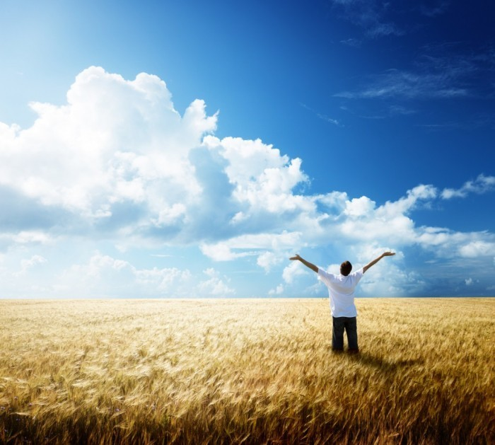 Fotolia 25722390 M 1024x921 Мужчина в поле   Man in the field