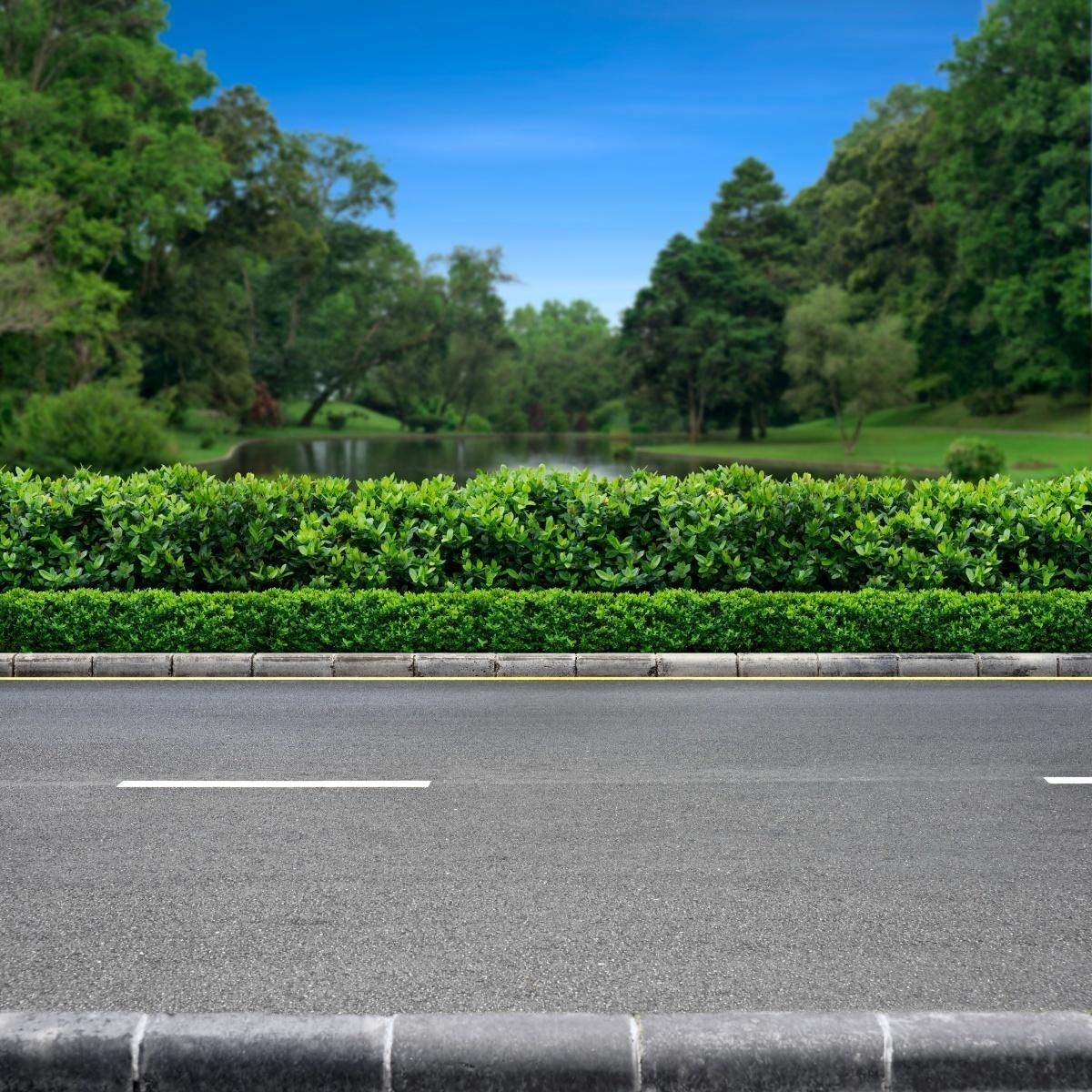 Обочина - Roadside