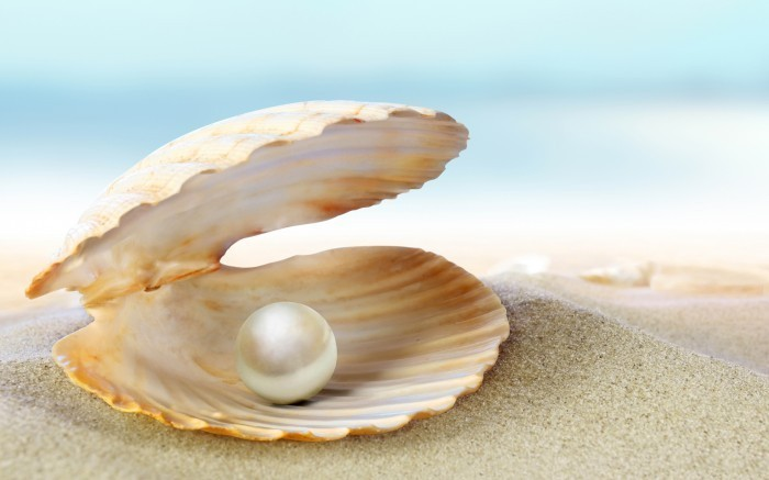 firestock pearl 229072013 Ракушка с жемчужиной   Shell with a pearl
