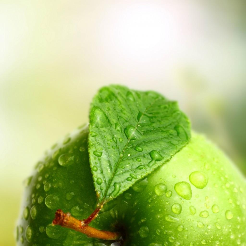 greenapple1 1024x1024 Зеленое яблоко   Green apple