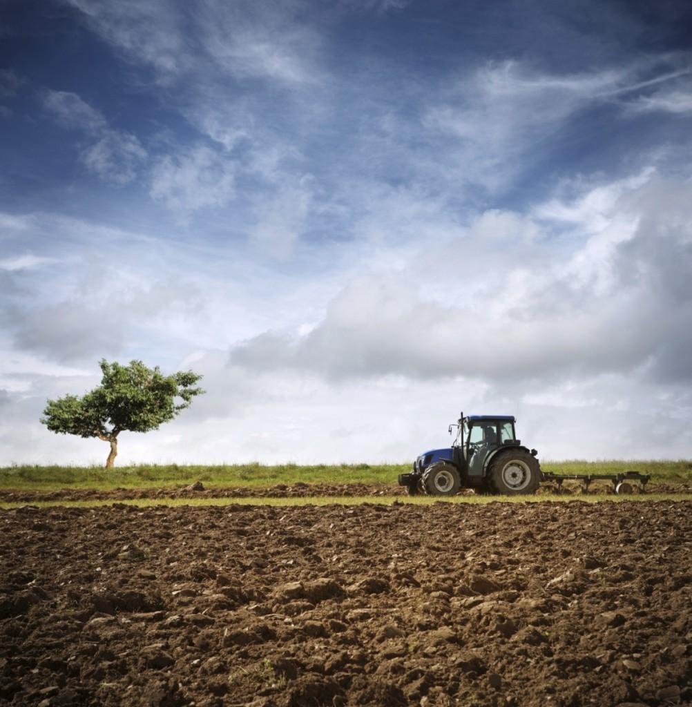 istock 000014316557medium 1002x1024 Трактор в поле   Tractor in field