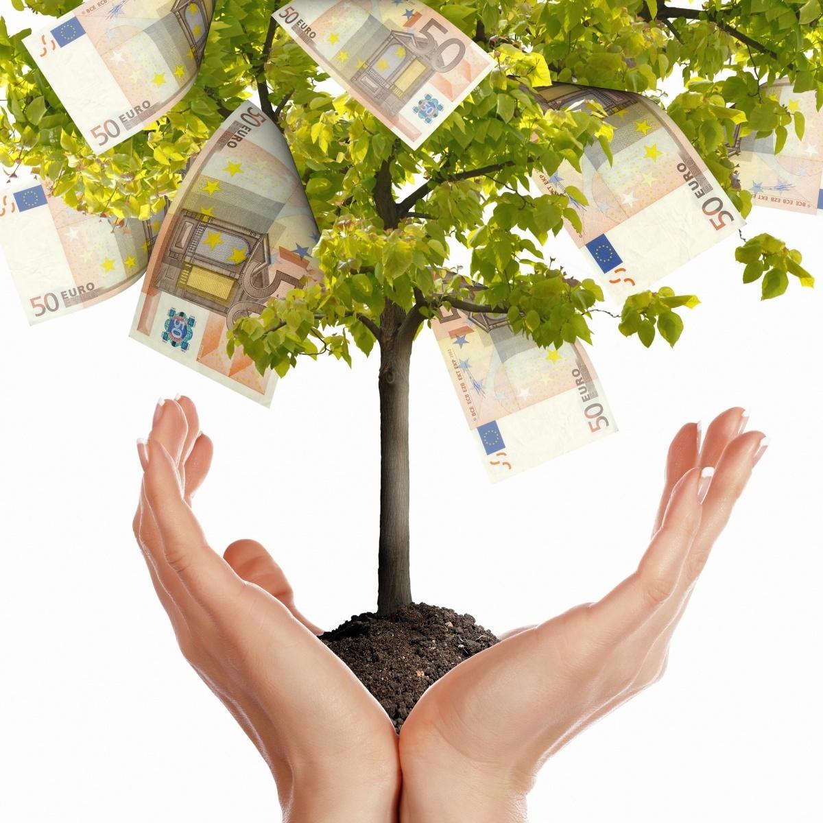 Дерево в ладонях с евро на листочках.