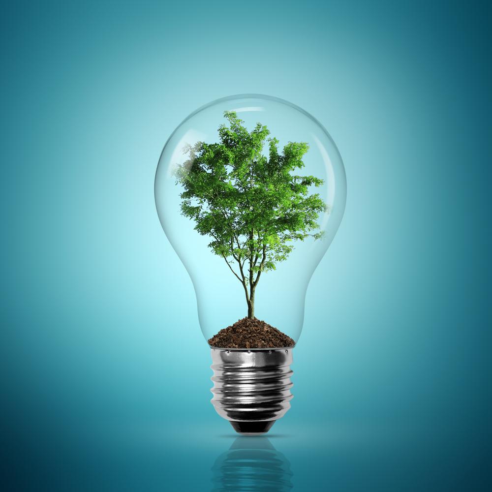 Дерево в лампочке - Tree in light bulb