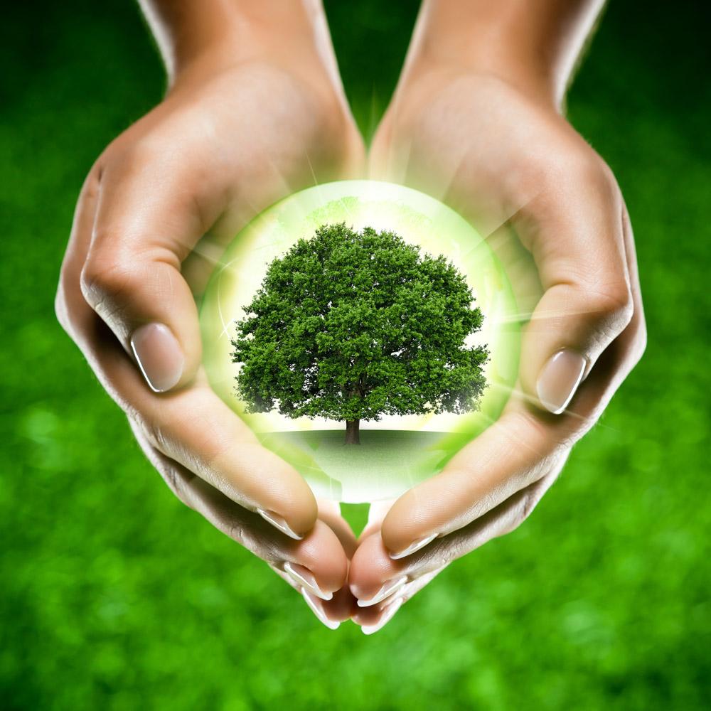 Крышечки мира - как помочь природе и людям / Душевная Москва Как помочь природе своими руками