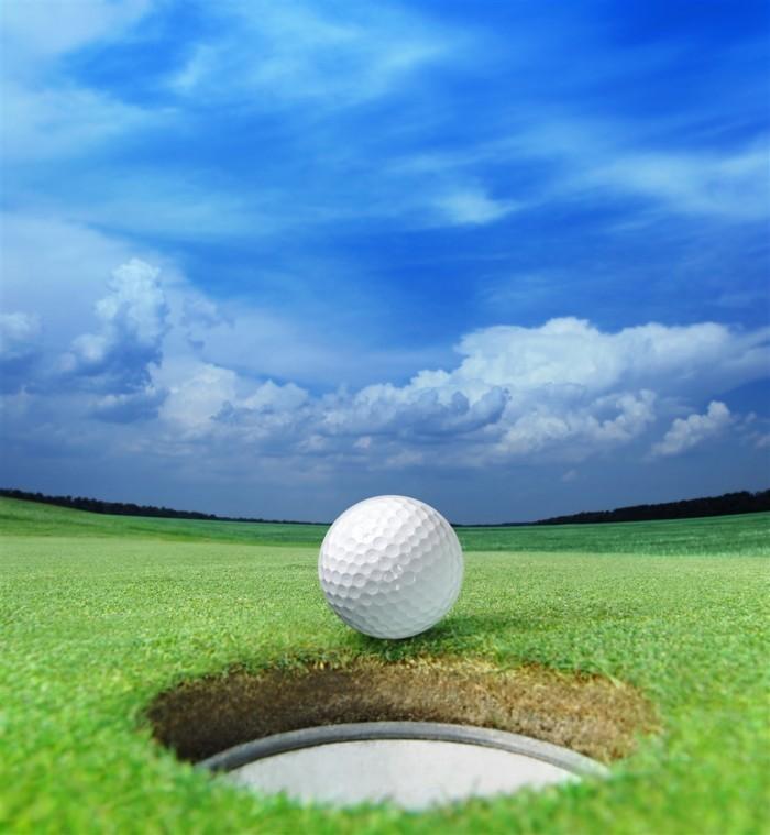 Fotolia 25598629 Subscription XL 700x759 Мяч для игры в гольф   Ball for the game of golf