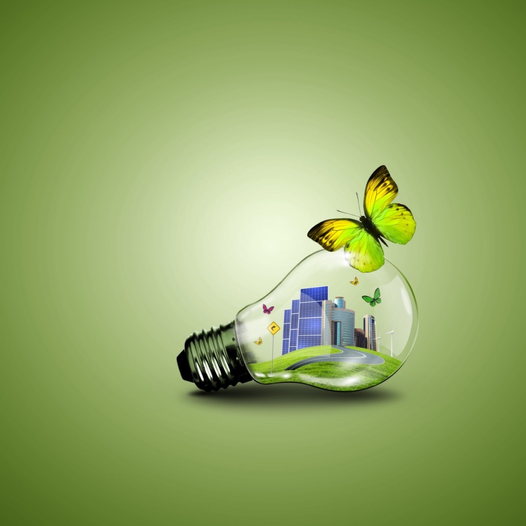 Fotolia 53237609 M 1024x1024 Лампочка с бабочкой   Light bulb with butterfly