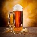 Бокал пива - A glass of beer