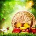 Яблоки в корзинке - Apples in a basket