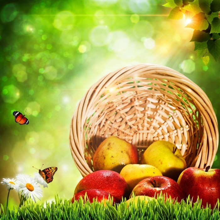 firestock apples 30082013 700x700 Яблоки в корзинке   Apples in a basket