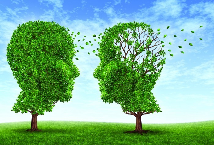 shutterstock 100688473 Два дерева в форме головы   Two trees in the shape of the head