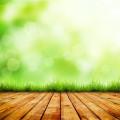 Деревянные дощечки с травой - Wooden plank with grass
