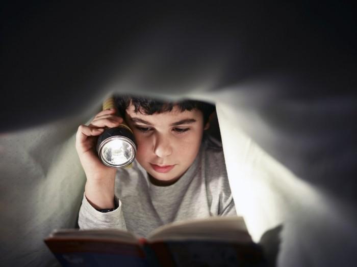 shutterstock 67420846 Мальчик с фонариком читает книгу   Вoy with a flashlight reading a book