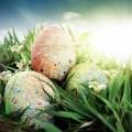 Декорированные яйца - Decorated eggs