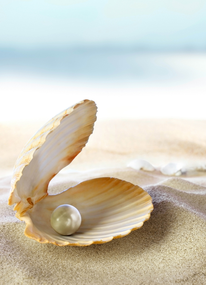 firestock pearl 290720131 Жемчужина в ракушке   Pearl in shell