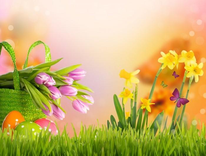 firestock tulips 09092013 Композиция из цветов   Flower arrangement