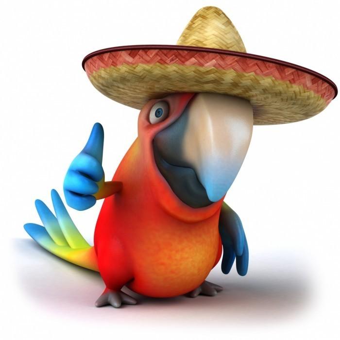 fotolia38501860l 700x700 Мультяшный попугай   Cartoon parrot