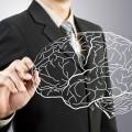 Мозг - Вrain