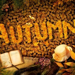 Autumn season concept design. Fall background with text in beautiful yellow forest. Vintage design with autumn fruit, mushrooms, leaves and book diary.