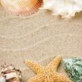 Песок с ракушками - Sand with shells