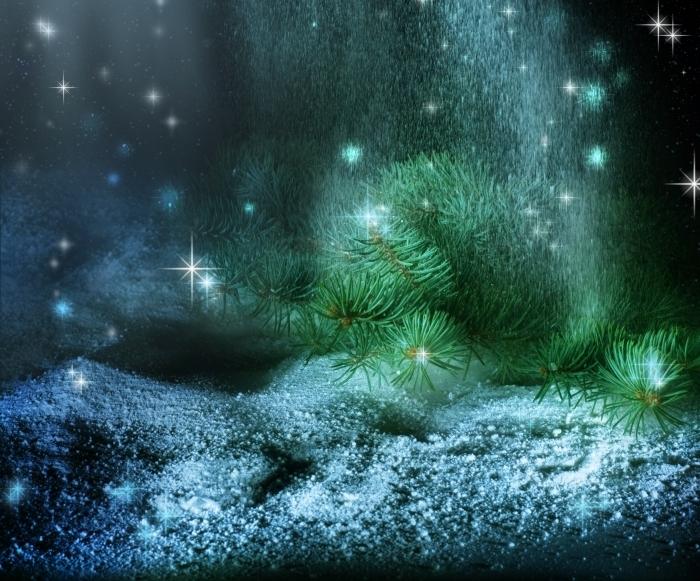 firestock 2711201330 Ветка елки в снегу   Christmas tree branch in the snow