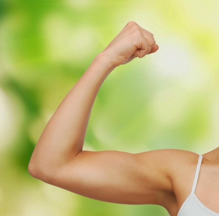 shutterstock 127151858 Мускулы   Muscles