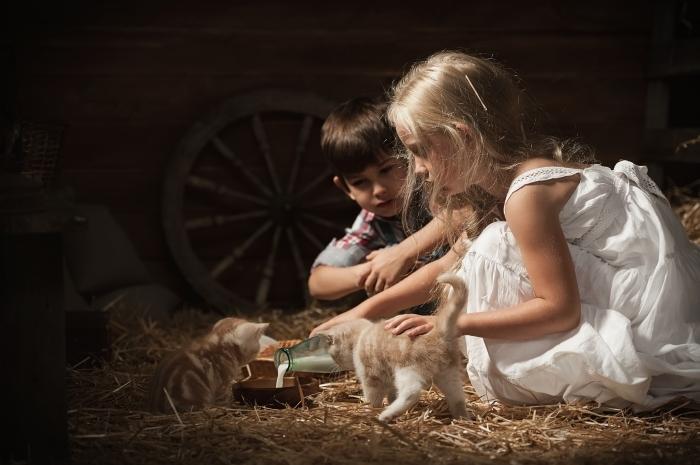 shutterstock 150732830 Дети с котятами   Children with kittens