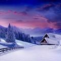 Снежная зима - Snowy Winter