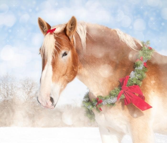 shutterstock 84012682 Лошадь с рождественским венком   Horse with a Christmas wreath