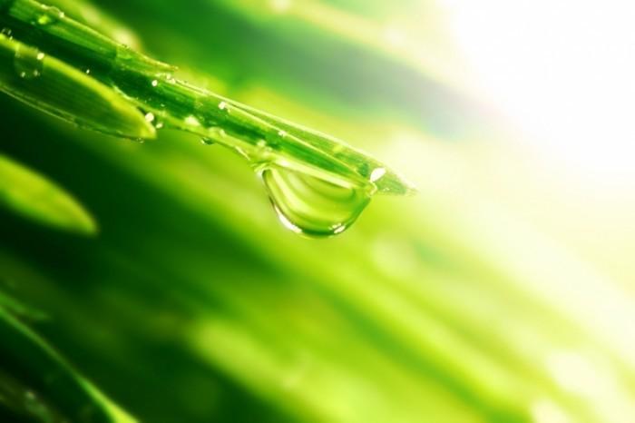 photodune 1877481 700x466 Капля воды   Water drop