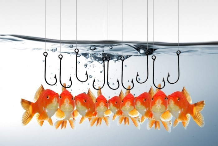 Fotolia 38355335 M 700x468 Рыбы на крючке   Fish on the hook