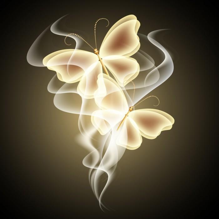 Fotolia 44629641 L 700x701 Бабочки   Butterflies