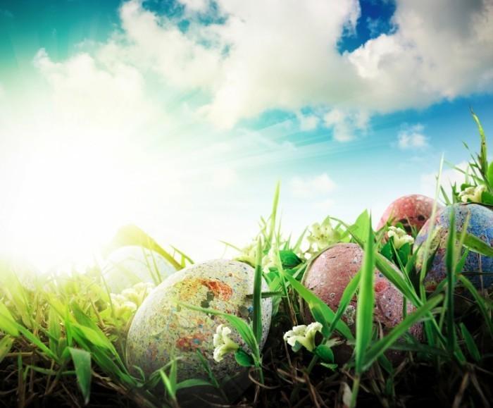 firestock 1804201409 700x579 Пасхальные яйца в траве   Easter eggs in the grass