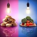 Выбор питания - Food selection