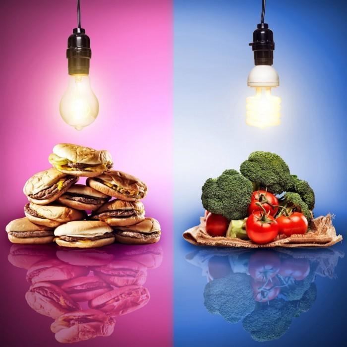 shutterstock 159224615 700x700 Выбор питания   Food selection