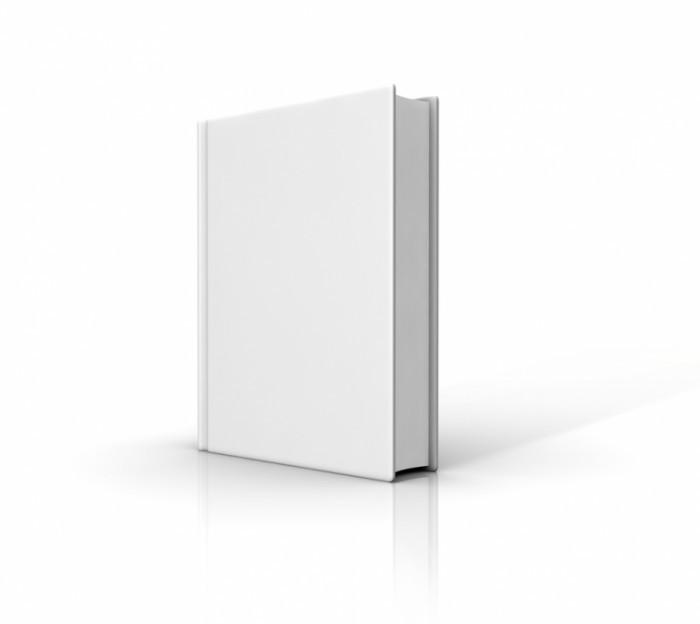 shutterstock 46241326 700x624 Белая книга   White paper