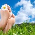 Ноги на траве - Feet on the grass