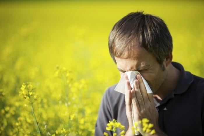 shutterstock 53303389 700x466 Аллергия   Allergy