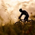 Велосипедист в закат - Cyclist at sunset