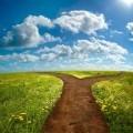Дорога на природе - Road in nature