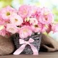Нежная композиция из цветов - Delicate floral arrangement