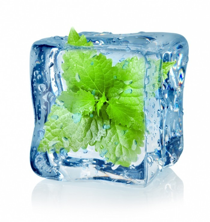 fotolia 47495388 subscription monthly m 700x742 Мята во льду   Mint in ice