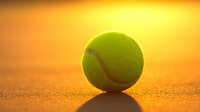 shutterstock 94316986 700x393 Теннисный мяч   Tennis ball