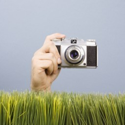 Фотоаппарат из травы - Camera is made ​​of grass