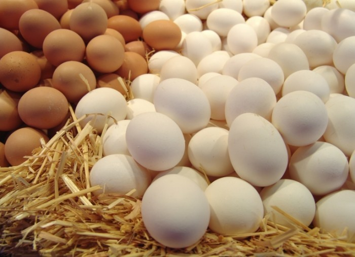 Fotolia 1616284 Subscription L enl 700x506 Куриные яйца   Сhicken eggs