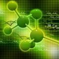 Строение клетки - Cell structure